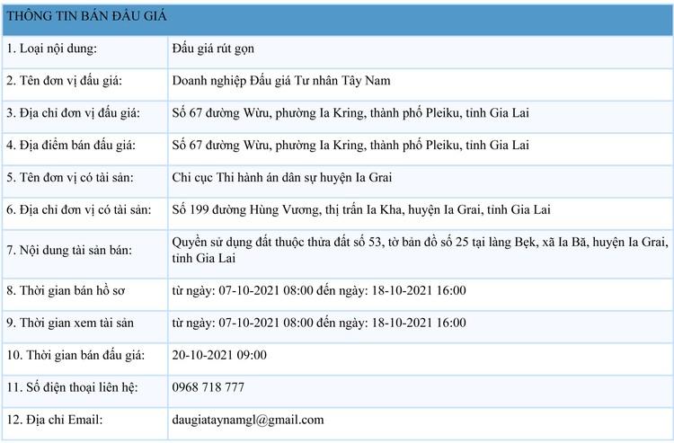 Ngày 20/10/2021, đấu giá quyền sử dụng đất tại huyện Ia Grai, tỉnh Gia Lai ảnh 1