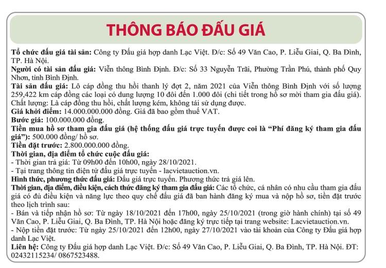 Ngày 28/10/2021, đấu giá lô cáp đồng thu hồi thanh lý tại tỉnh Bình Định ảnh 1