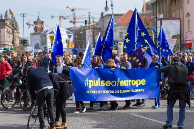 Hàng nghìn người biểu tình bảo vệ EU ở Đức ảnh 2