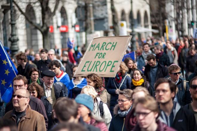 Hàng nghìn người biểu tình bảo vệ EU ở Đức ảnh 3
