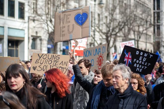 Hàng nghìn người biểu tình bảo vệ EU ở Đức ảnh 4
