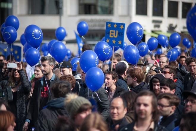 Hàng nghìn người biểu tình bảo vệ EU ở Đức ảnh 12