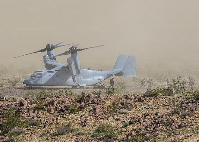 Lính thủy đánh bộ Mỹ huấn luyện tác chiến đô thị ảnh 3