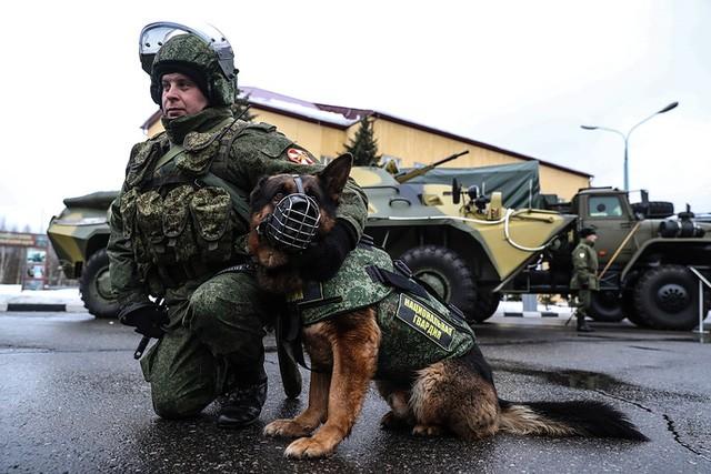 """Sức mạnh """"đáng nể"""" của Vệ binh Quốc gia Nga ảnh 11"""
