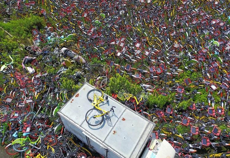 """Những """"nghĩa trang"""" xe đạp khổng lồ ở Trung Quốc ảnh 7"""