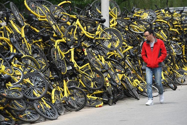 """Những """"nghĩa trang"""" xe đạp khổng lồ ở Trung Quốc ảnh 11"""