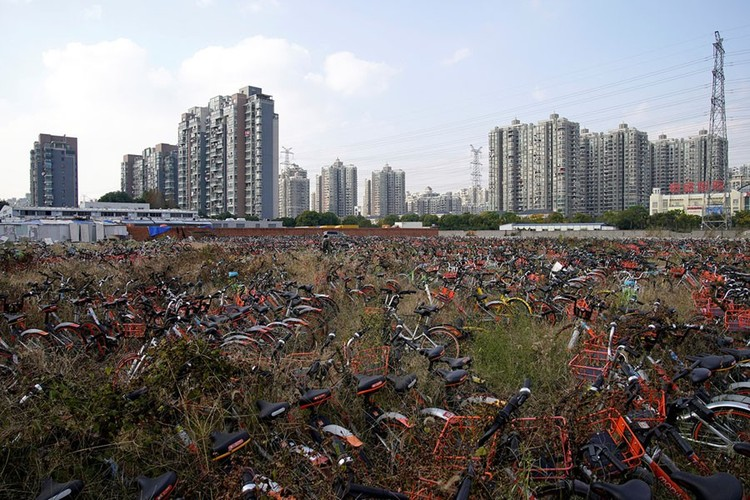 """Những """"nghĩa trang"""" xe đạp khổng lồ ở Trung Quốc ảnh 16"""