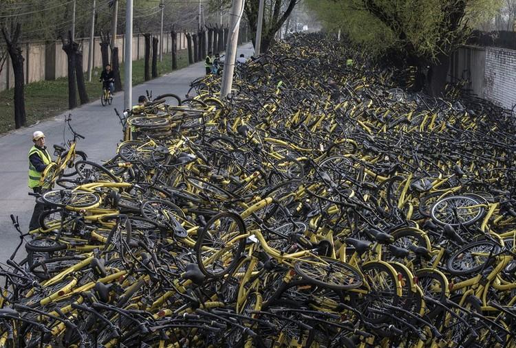 """Những """"nghĩa trang"""" xe đạp khổng lồ ở Trung Quốc ảnh 17"""