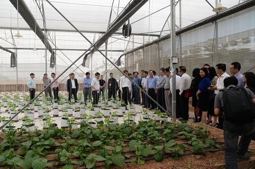 VNPT Technology phát triển giải pháp IoT thông minh hỗ trợ nông nghiệp ảnh 1