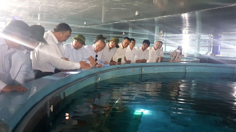Bộ trưởng Nguyễn Chí Dũng: Phú Yên nên đặt mục tiêu, khát vọng cao hơn để phát triển bứt phá ảnh 1