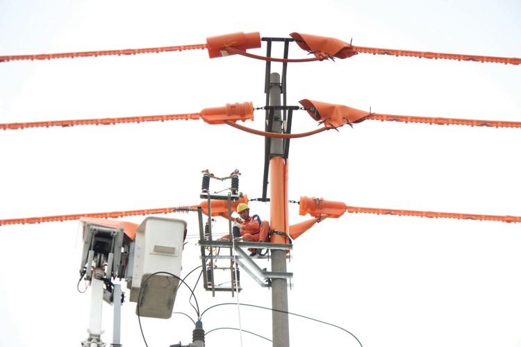 EVNNPC bảo đảm cấp điện phát triển kinh tế và phòng, chống Covid-19 ảnh 1